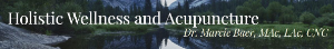 Holistic Wellness and Acupuncture Logo