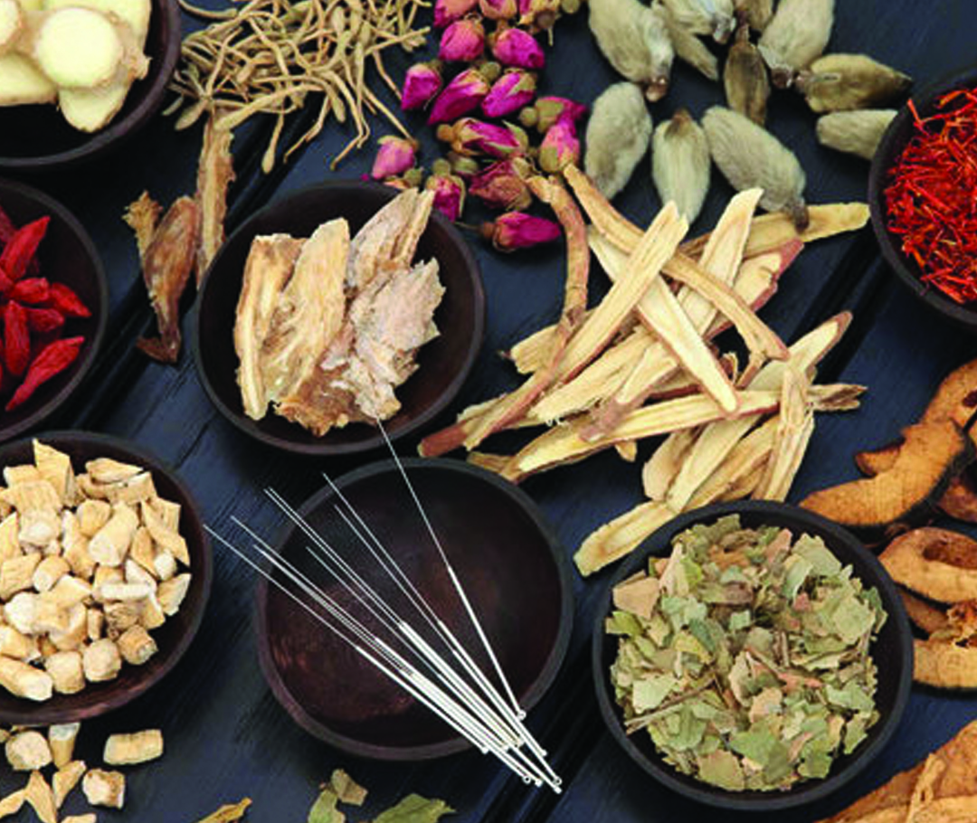 Photo of herbs and acupuncture needles