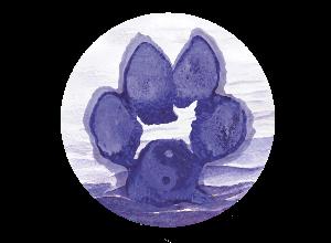 Paw Chi Holistic Veterinary Care Logo